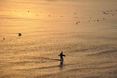 Golden sea (NIKOZAR (Nicola Zaratta)) Tags: sea gold nikon tramonto mare puglia oro taranto