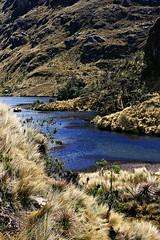 El Cajas National Park (Lonfunguy) Tags: southamerica nature landscape nationalpark ecuador sudamerica parquenacional cajas lascajas elcajas parquenacionallascajas amalavida