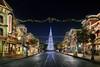 Main Street Christmas - Disneyland (Gregg L Cooper) Tags: disney disneyland disneylandresort disneylandchristmas mainstreetusa tree christmaslights christmastree