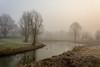 Beukenpark-10-1 (stevefge) Tags: beuningen mist nederland netherlands park gelderland water winter turkey reflectyourworld reflections nature natuur nl nederlandvandaag landscape