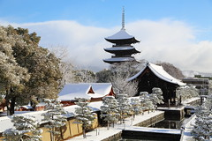 Winter morning in Kyoto (Teruhide Tomori) Tags: 教王護国寺 東寺 京都 世界遺産 日本 五重塔 snow winter 雪 冬 pagoda temple kyoto japan japon landscape worldheritage tojitemple architecture woodenbuilding construction