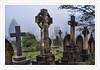 St Pancras and Islington Cemetery (D.T.Morris) Tags: david morris dtmphotography st pancras islington cemetery london graveyard graves headstones