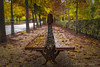 Adiós otoño... (Carhove) Tags: autumn otoño nature naturaleza park parque garden trees hojas ocres