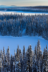 Upper Fraser (robertdownie) Tags: trees canada lake frozen forest winter water cold blue light shadow white aerial snow ice bc prince freeze silent deep lakes fort remote northern pg george british columbia fraserfort