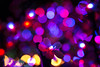 Lights 2017 (DVchigarev) Tags: christmas lights colors canon 70d sigma 35mm 14 art hsm sochi russia newyear 2016 2017 vinette lightroom evening night party hard life amazing flower bright x32