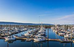Homer Marina - Alaska (photowarrington) Tags: alaska homer marine usa us boat holiday reflection abstract pleasure recreation blue sky mountains