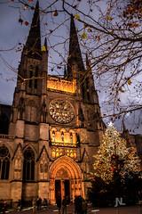 Cathédrale Saint-André Bordeaux (Janick Norman Leroy) Tags: cathédrale saintandré bordeaux eglise ville city nuit night noel sapin lumières light exposition canon t5 1200d