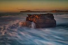 Standing proud (RoosterMan64) Tags: australia landscape longexposure monavale nsw rockshelf seascape sunrise waterflow