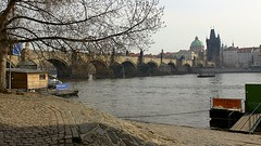 Charles Bridge (oxfordblues84) Tags: bridge tree water architecture river prague praha czechrepublic charlesbridge stonebridge karlvmost vltavariver vikingrivercruise 5photosaday oldtownbridgetower saintfrancisofassisichurch saintfrancisofassisichurchprague