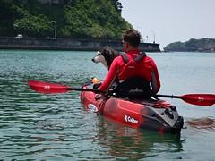 X-Caliber kayaking with your dog