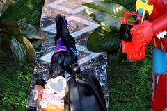 Paprihaven 0787 (MayorPaprika) Tags: horse castle set toy dc carriage barbie prince story diana wonderwoman batman 16 custom diorama direct brucewayne dragun shogunwarrior canoneos50d jumbomachineder