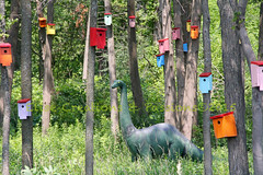 Champ Hangin' Out With The Birds (Elise Creations & Passions) Tags: trees greenleaves
