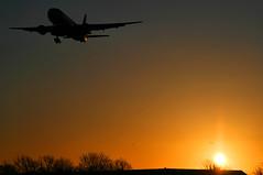 777 @ Sunrise (Shaun Grist) Tags: london sunrise airport heathrow aircraft aviation landing airline boeing 777 aeroplanes londonheathrow avgeek