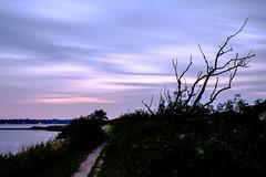 Leben und Vergänglichkeit (Manuel Eumann) Tags: ocean sky nature clouds landscape evening abend meer fuji natur himmel wolken august landschaft ostsee schleswigholstein langzeitbelichtung abendstimmung 2015 holnis manueleumann fujixt1