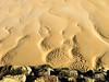 Formas en los arenales, marea baja. Suances. (Airbeluga) Tags: cantabria españa marcantábrico naturaleza nature paisajes suances