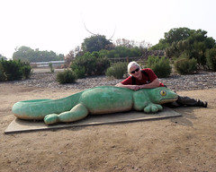 063 Peter Imitates A Gecko (saschmitz_earthlink_net) Tags: 2016 california kennethhahnpark losangelescounty losangeles baldwinhills park staterecreationarea hike hiking