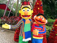 Bert and Ernie (meeko_) Tags: bert ernie sesamestreet muppet characters buschgardenscharacters muppetcharacters sesamestreetaveryfurrychristmas sesamestreetsafarioffun busch gardens tampa africa buschgardens buschgardenstampa buschgardenstampabay buschgardensafrica themepark christmas town christmastown florida