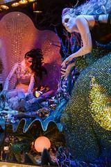Under the Sea (Gary Burke.) Tags: storewindow holidaydisplay bloomingdales bloomies christmas holiday window display store lexingtonavenue 59thstreet manhattan nyc decoration ny newyorkcity newyork storefront midtown xmas garyburke city canon eos 70d dslr klingon65 gothamist departmentstore shopping canoneos70d nycdetails iloveny nycchristmas nychristmas ilovenewyork nyctravel tourism christmasinnewyork seasonal merrychristmas touristattraction ilovenyc newyorklife citylife cityliving travel windows iheartnewyork fb urban christmas2016 underwater fish mermaid clam pearl fashion designer