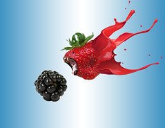 Berries (Cat Girl 007) Tags: blackberry blue cute dangerous fangs fantasy food fruit geneticallymodifiedfood gmo green harmful imagination impossible makebelieve modified mouth mouthopen photomanipulation produce red surreal teeth
