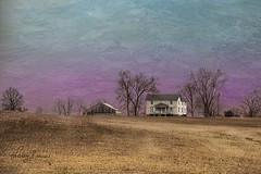 House by Dead Trees (LarryHB) Tags: driving gold photography horizontal abandoned farm field rural capegirardeaucounty missouri tree winter solitude bench house 2011 landscape texture larrybraunphotography