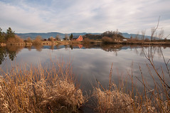 Bond Butte Reflections 4_1 (martinjones1946) Tags: martinjones nikond5000 landscape linncounty pond barn bondbuttepond bondbutte reflections reflection redbarn winter color oregon rural rustic rusticbarns outdoors platinumheartaward