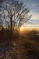Sunset (Gr@vity) Tags: sunset sony a7s sonnenuntergang dawn