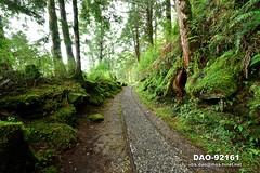 DAO-92161 寧靜,芬多精,森林浴,負離子,舒壓,呼吸,健康,舒適,空氣品質,見晴懷古步道,步道,森林鐵路,鐵道,鐵路,鐵軌,高山,山,樹木,樹林,森林,太平山森林遊樂區,太平山國家森林遊樂區,宜蘭太平山,太平山,宜蘭旅遊景點,宜蘭縣,大同鄉 (盈盈設計影像網 0932046950) Tags: 寧靜 芬多精 森林浴 負離子 舒壓 呼吸 健康 舒適 空氣品質 見晴懷古步道 步道 森林鐵路 鐵道 鐵路 鐵軌 高山 山 樹木 樹林 森林 太平山森林遊樂區 太平山國家森林遊樂區 宜蘭太平山 太平山 宜蘭旅遊景點 宜蘭縣 大同鄉 橫式 亞洲 台灣 taiwan 台灣圖片 台灣旅遊 台灣影像 台灣圖庫 台灣景點 台灣風景 數位攝影 風景攝影 風景 攝影 圖庫 圖片 圖像 戶外 戶外攝影 觀光景點 旅遊 觀光 休閒 地標