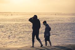 DSC062011 (xu3rmp4u04u04) Tags: sony a65 two pepple sea beach yallow love shade sun light free