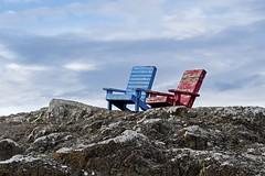 Birder Roost (David Badke) Tags: oakbay bc chair