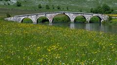 Šuica river (Leonardo Đogaš) Tags: river bridge water spring šuica suica landscape proljeće bosnia bosna leonardo đogaš