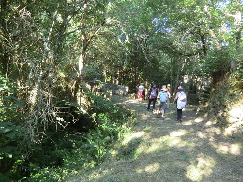 Fotografía Paquita Valdi Marcha 391 27 y 28 de Junio Parque Natural de la Encina de Lastra Ourense (10)