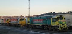 Three Locomotives in a row (geoffreyw@kinect.co.nz) Tags: yards dunedin railways