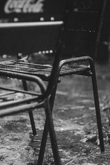. (Anastasia Z.) Tags: street city travel urban blackandwhite bw white black film nature architecture analog canon stpetersburg grey town russia bokeh outdoor folk f14 grain tourist retro m42 streetphoto zenit sight analogue manual bnw helios lightroom spb peterhof thestreetnetwork   kinfolk   helios442   vsco 442 42 canon550d vscofilm