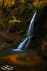 Caras Galadhon (xrhstos.bas23) Tags: greece rhodope drama frakto autumn leaves longexposure landscape water waterfalls nature macedoniagreece makedonia timeless macedonian μακεδονια