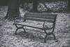 Le banc sous le givre (LACPIXEL) Tags: banc bench banco givre escarcha frost hiver winter invierno noiretblanc blackandwhite blancoynegro parque parc park monochrome extérieur exterior outside nikon nikonfr nikonfrance d4s fx flickr lacpixel