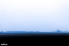 fog_2017_0584 (cmiked) Tags: waco texas unitedstates us 365015 proj365