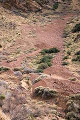 Talus Field - Franklin Mountains (Stuart Borrett) Tags: christmas2016 elpaso texas mountains franklinmountains state park franklinmountainsstatepark talus scree geology ecology environment hike landscape desert chiua chihuahuandesert