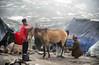 Horses for hire, Rohtang Pass (Niall Corbet) Tags: india himachalpradesh himalaya himalayas manali ley ladakh rohtang rohtangla rohtangpass horse