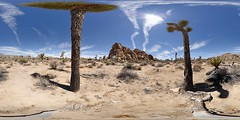 US-CA Joshua Trees NP - Hidden Valley - 2016-07-09 (N-Blueion) Tags: