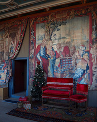 2016_11_0780 (petermit2) Tags: floralarrangement flowerarrangement christmas xmas bolsovercastle bolsover castle heritage derbyshire englishheritage