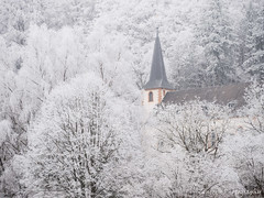 Kirche im Frost (Zenergy Photography) Tags: frost germany kirche saarland stgangolf winter bäume trees church landschaft landscape gebäude