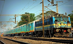 Indian Railways : New sensation, new train, the all new HUMSAFAR EXPRESS ! Led by an weird goods loco moving towards KGP gracefully ! (Clicker Purnava) Tags: india indian railways indianrailways ir iri irfca incredible incredibleindia beauty beautiful indiatravel indialove humsafarexpress humsafar express sbc kyq kamakhya bangalore bengaluru superfast sf livery 12504 travel traveller travelling travelphotography tour tourist rail rails railroad road track train passenger transport amazing awesome loco locomotive bengal westbengal wb chengail cga ser southeastern nfr northeastfrontier clw conventional afternoon sunny sunnyday trainspotter trainspotting railwaylovers ferroequinologist railfan railfans trainsworldwide worldtrains railbuff sky sport speed mps discoveryindia natgeo vehicle outdoor lhb