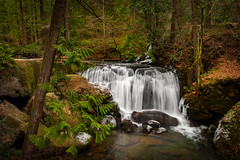 Whatcom Falls, Washington (EdBob) Tags: whatcomfalls whatcomfallspark whatcomcounty waterfall silkywater silky winter ice snow forest rainforest rocks stream creek river washington washingtonstate trees nature leaves scenic wpa water outdoors red beautiful 2017 usa america clean flow flowing natural pacificnorthwest