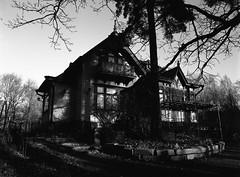 Meilahti scenery (danieltim.net) Tags: blackandwhite film mediumformat retro80s aviphot finegrain helsinki meilahti europe light shadows tones contrast availablelight sunlight