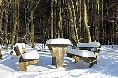 Winterlandschaft (Birgit Hüttebr.) Tags: schnee outdoor winter wald tisch bank snow landscape