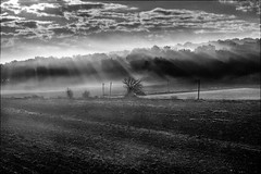 Rayons solaires sur  ligne électrique (vedebe) Tags: soleil lumières lumière noiretblanc netb nb bw monochrome paysages