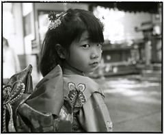 HANA (Tamakorox) Tags: daughter family girl portrait art japan japanese kimono asia light shadow pleasure love shichigosan 娘 家族 日本 日本人 光 影 喜び 愛 着物 七五三 film analoguecamera b&w mamiyarb67prosd kodaktmax400 fujibrovarigradewp charming