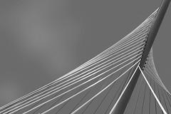 Puente (miguelangelortega) Tags: puente bridge ingeniería obracivil tirantes mástil contrarrestos acero blancoynegro bw bn nikon 1755 toledo