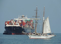 Tallship Irving Johnson, Containership & Tug, San Pedro   034 (Konabish ~ Greg Bishop) Tags: sanpedro