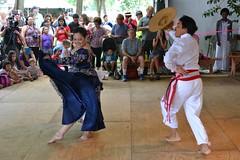 DSC_0058a (Andy961) Tags: people peru smithsonian dc washington dance costume dancers skirt performers peruvian folklifefestival 2015folklife